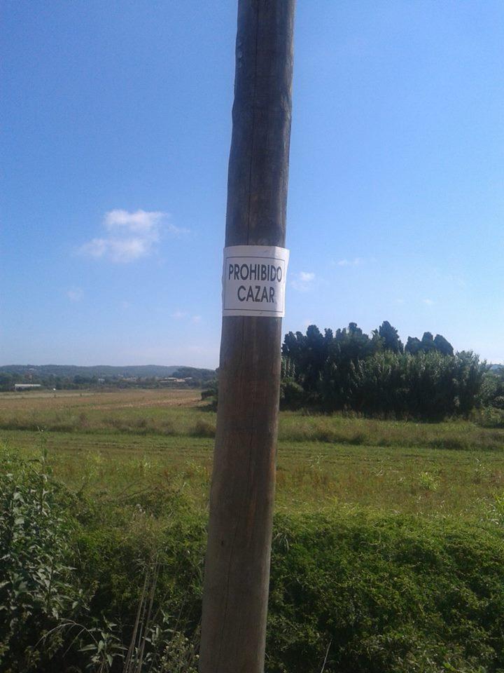 fascinante, aunque aterrador aviso que me encuentro en la linde del camino de ronda de bicicletas que nos lleva hasta las playas..